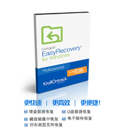 EasyRecovery 12 for Win【专业版 + 序列号1年期授权】