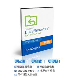 EasyRecovery 12【专业版Win版 + 立即授权】