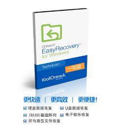 EasyRecovery 12 for Win【企业版 + 序列号1年期授权】