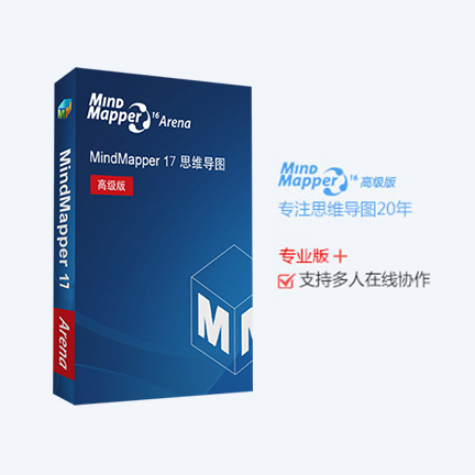 MindMapper 17 英文【高级版 + Win】