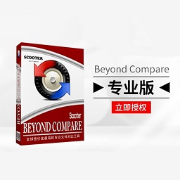 Beyond Compare【专业版+立即授权】